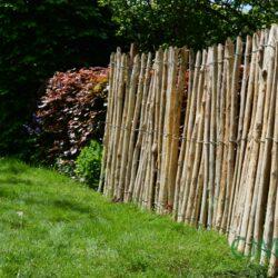 Robinia hout: duurzaam hardhout met oneindige mogelijkheden