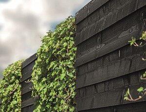 Zwart en gekleurd hout